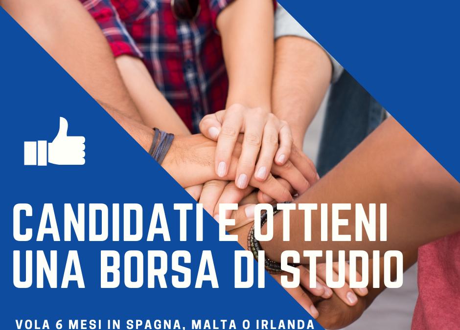Opportunità di tirocinio in Irlanda, Spagna e Malta per neodiplomati